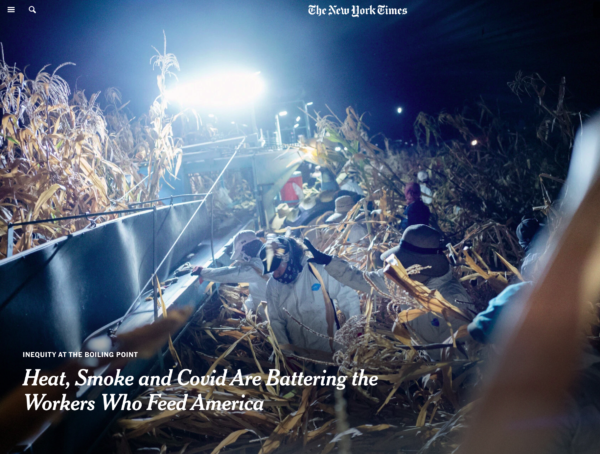 photo of harvesting corn at night